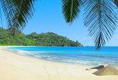 Sand Heaven Exotic
