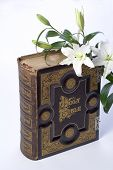 picture of holy-bible  - Holy Bible books christianity religions gospels wisdoms flower - JPG