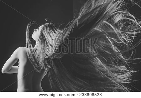 poster of Hairdresser And Barber. Beauty Salon And Fashion. Woman With Stylish Long Hair And Naked Back. Hairc