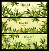 Green Olive Branch Banner For Natural Oil And Organic Olive Product Label Template. Olive Fruit, Tre poster