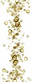 Champage Bubbles