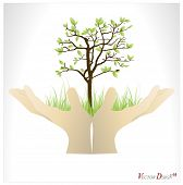 Hand holding a tree that show the growth your business. Vector illustration.