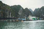 Floating Fishing Village In The Halong Bay, Descending Dragon Bay, At The Gulf Of Tonkin Of The Sout poster