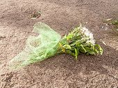 Flowers On The Ground, Discarded Bouquet And Rejected Gift poster
