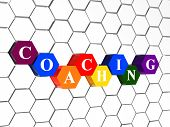Coaching In Color Hexagons In Cellular Structure