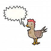 squawking rooster cartoon