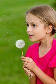Summer joy - lovely girl blowing dandelion, happy child concept. Allergy season.