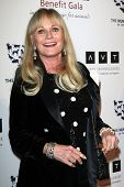 BEVERLY HILLS - Mär 23: Valerie Perrine am die 2013 Genesis Awards-Benefiz-Gala zu den Beverly-Griff