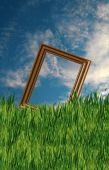 Frame in the Field