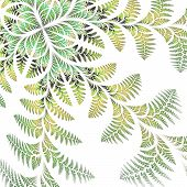 Fabulous Asymmetrical Pattern Of The Leaves On White Background. Computer Generated Graphics.