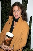 LOS ANGELES - NOV 11:  Jacqueline Bisset at the