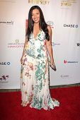 LOS ANGELES - NOV 8:  Vanessa Bronfman at the YWCA Greater Los Angeles Annual Rhapsody Ball at Bever