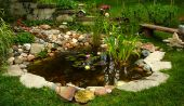 stock photo of h20  - Backyard oasis pond beautifully landscaped with lilies and waterfall - JPG