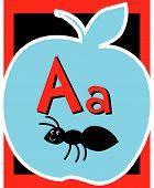 foto of nouns  - Flash Card Letter A nouns - JPG
