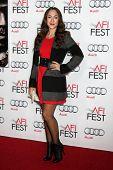 LOS ANGELES - NOV 12:  Diana DeGarmo at the
