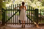 stock photo of girlie  - Little girl standing on tiptoes and looking over the fence - JPG