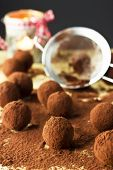 Chocolate truffles with cocoa powder for christmas