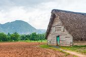 stock photo of tobacco barn  - Barn used for curing tobacco at the Vinales valley in Cuba - JPG