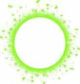 green grass on circle