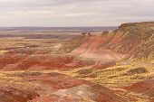 pic of petrified  - Red Desert in Petrified Forest National Park - JPG