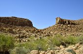 Spring Desert Landscape In Negev.