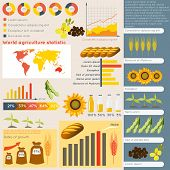 Agriculture infographic elements