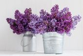 stock photo of paint pot  - Two bouquet of lilac flowers in zinc pots on a white wooden board home decor in a rustic style - JPG