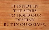 It is not in the stars to hold our destiny but in ourselves - quote by William Shakespeare on wooden