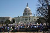 Healthcare Reform Demonstration