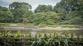 A View of the Imperial Palace East Gardens in Tokyo Japan.