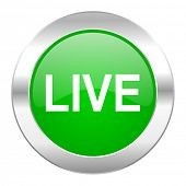live green circle chrome web icon isolated