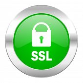 ssl green circle chrome web icon isolated