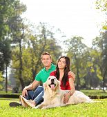 Young couple sitting in park with a dog shot with tilt and shift lens