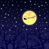pic of sleigh ride  - Santa Claus riding on a reindeer night - JPG