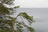 Baikal in cloudy weather