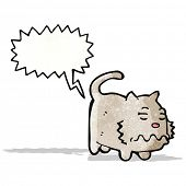 foto of farting  - cartoon farting cat - JPG