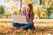 Smiling Woman Chatting on Laptop While Sitting on Ground with Dry Leaves During Autumn Season. Captu