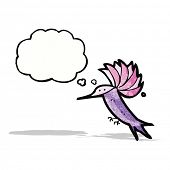 cartoon hummingbird with thought bubble