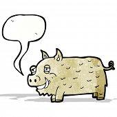 cartoon hairy pig