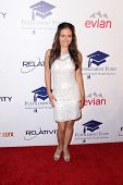 LOS ANGELES - OCT 14:  Danica McKellar at the Fulfillment Fund Stars Benefit Gala 2014 at Beverly Hi