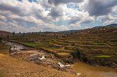Madagascar Highland Landscape