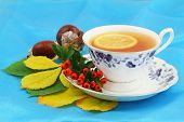Lemon tea in vintage cup with rowan berries, chestnuts and autumn leaves on blue background