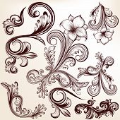Collection Of Vector  Hand Drawn Swirls In Vintage Style