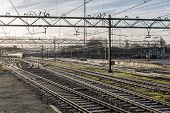 Railway Tracks In Morning Sun At The Dutch Station Of The Hague