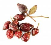 Dried Rosehip Berries Isolated On The White Background