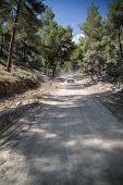 Off Roading On Road Through Dense Foliage On Mediteranean Island Ibiza