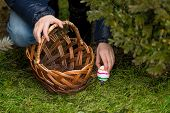 Closeup Shot Of Girl Putting Colorful Easter Egg In The Basket
