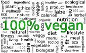 100% vegan wordcloud