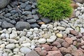 Backyard Decorated With Stones