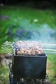foto of frizzle  - Preparation of meat slices in sauce on fire - JPG